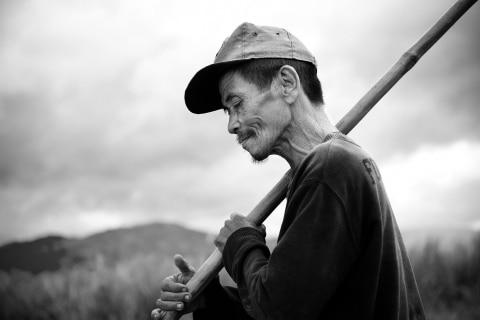 04_Zuckerrohr-Ernte-Negros-Philippinen